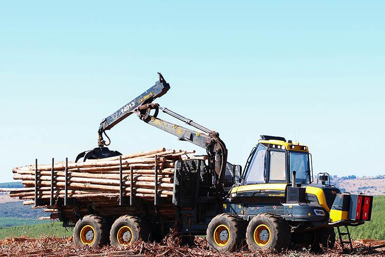 Forwarder operando em área florestal ilustrando as atividades de uma das vagas abertas para o Drive-Thru do Emprego